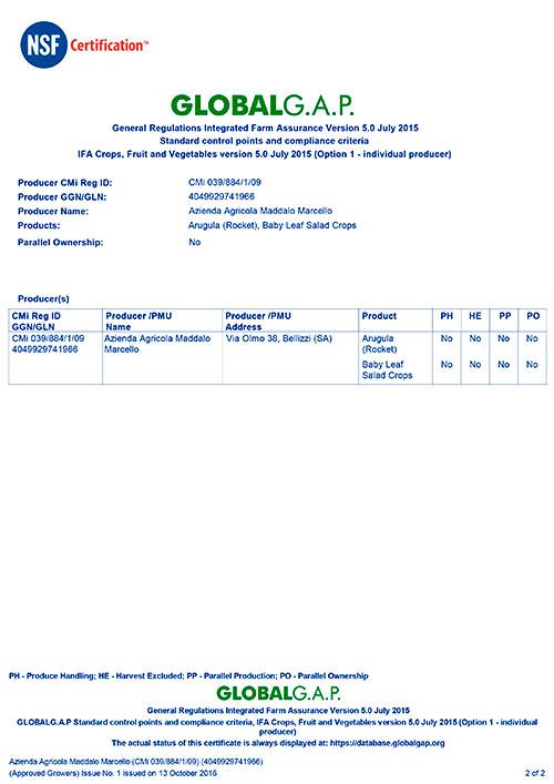 GG2016-039-884_Appendix-MADDALO-2DI2